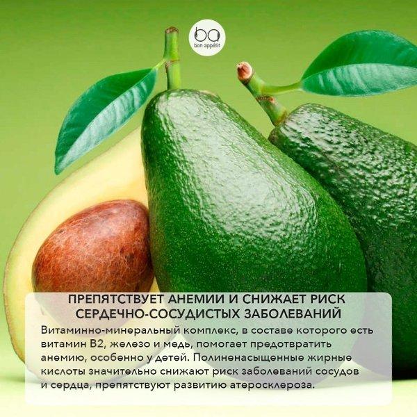 Полезные свойства авокадо для организма и как его употреблять: польза и вред, калорийность