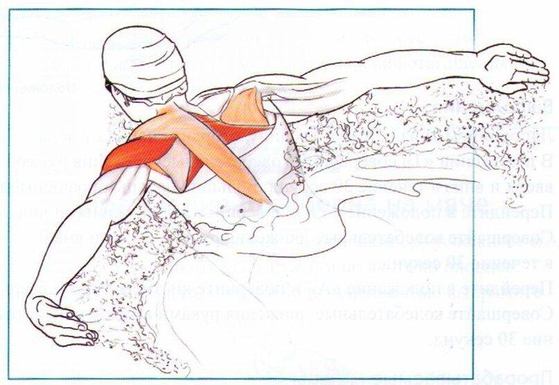 Плавание для похудения ног, бедер, талии, рук. упражнения, план