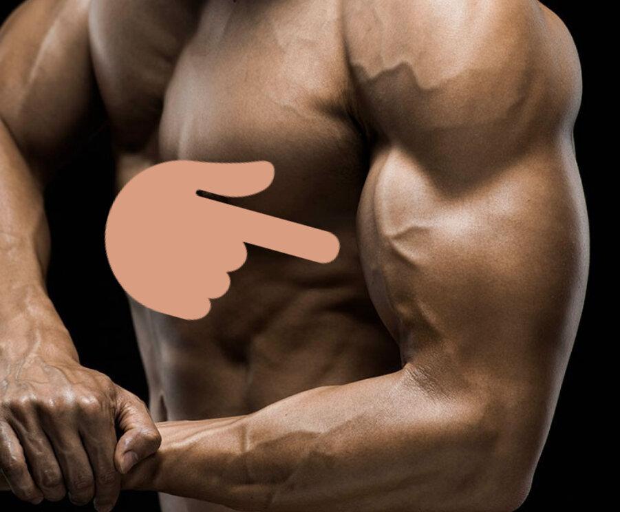 Почему не растет бицепс? Создаем руки титана.