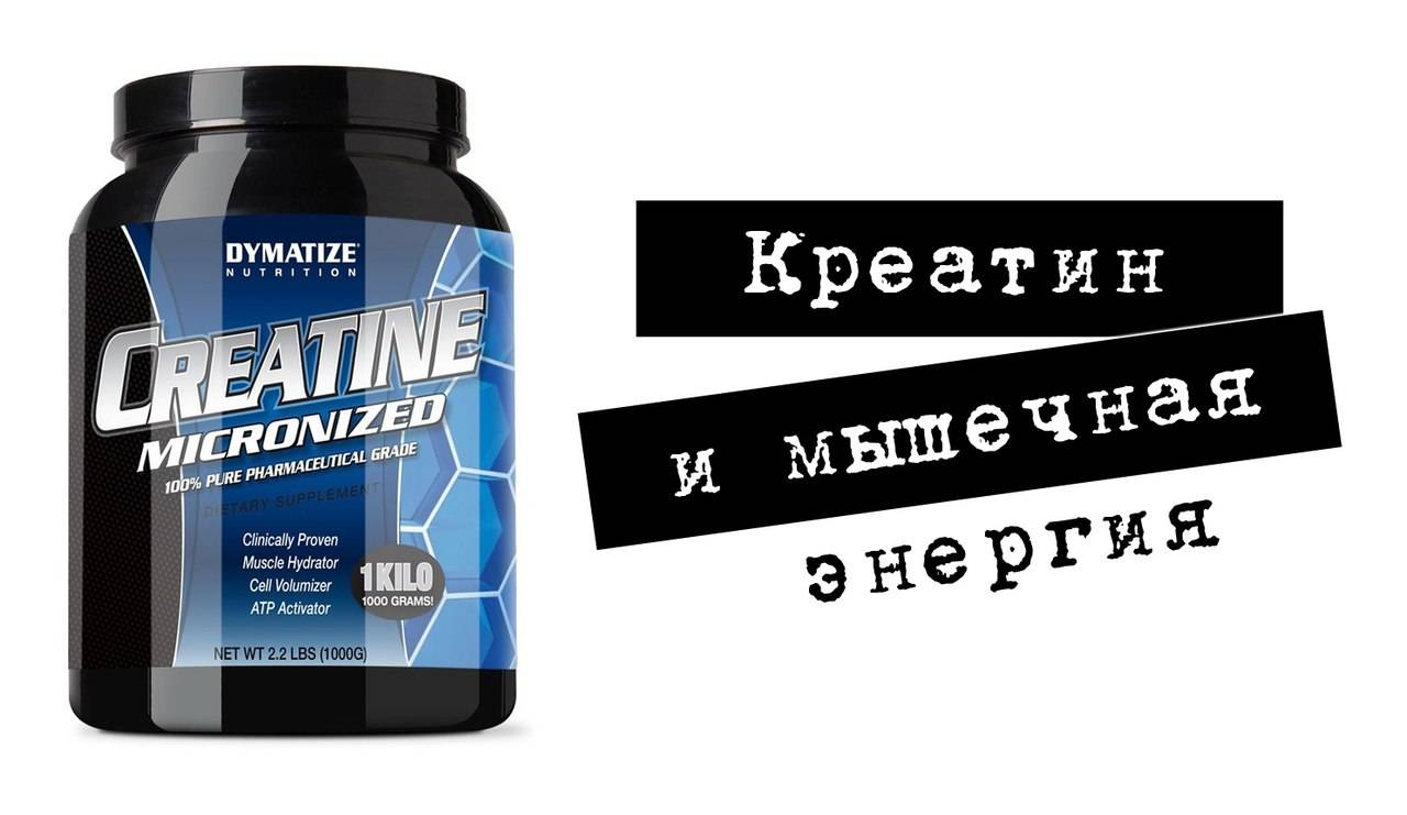 Обзор креатина micronized creatine powder от компании optimum nutrition