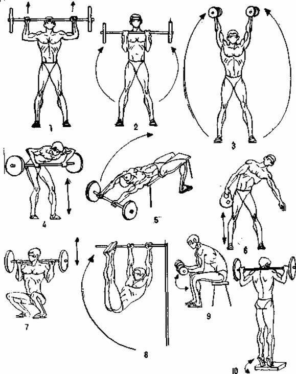 ✅ комплексы упражнений по атлетической гимнастике для девушек. атлетическая гимнастика для женщин - sundaria.su