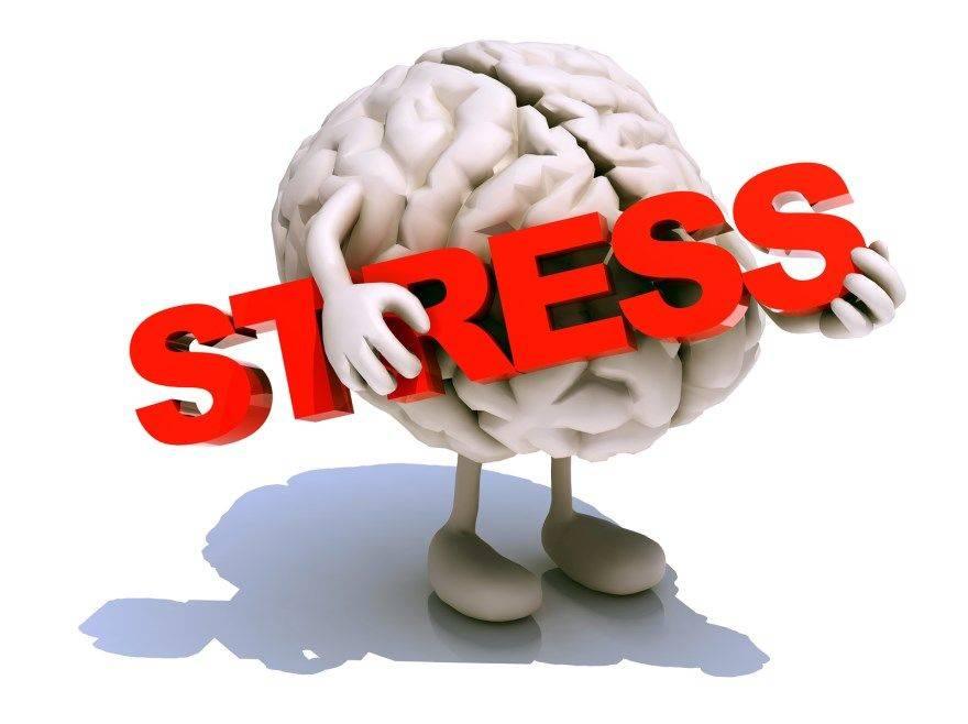 Как стресс влияет на работу мозга и память