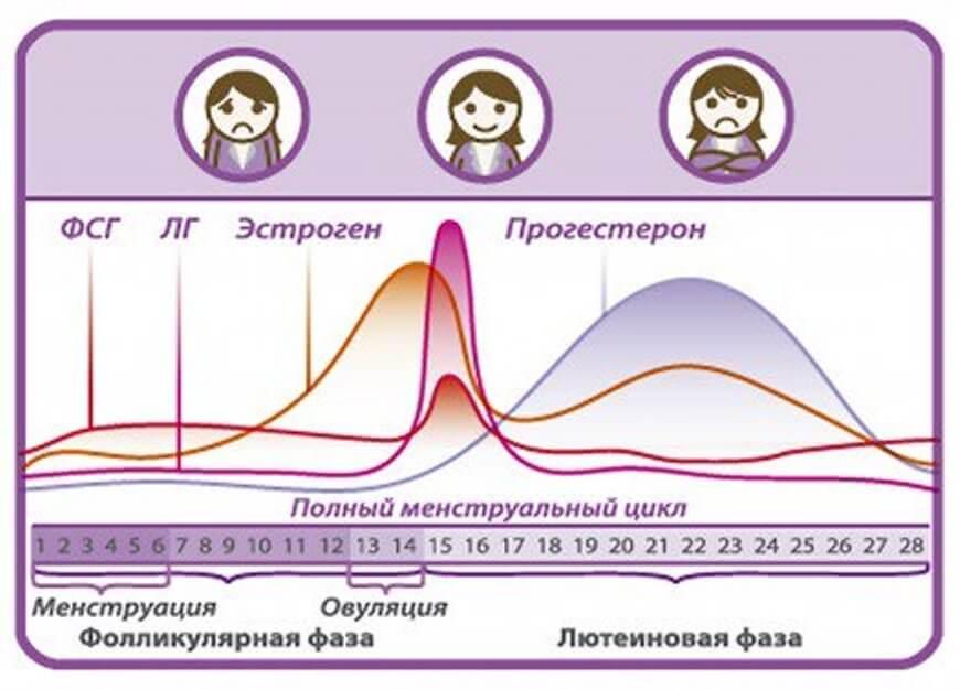 Мужчины и женщины: различия в метаболизме и тренировках – зожник  мужчины и женщины: различия в метаболизме и тренировках – зожник