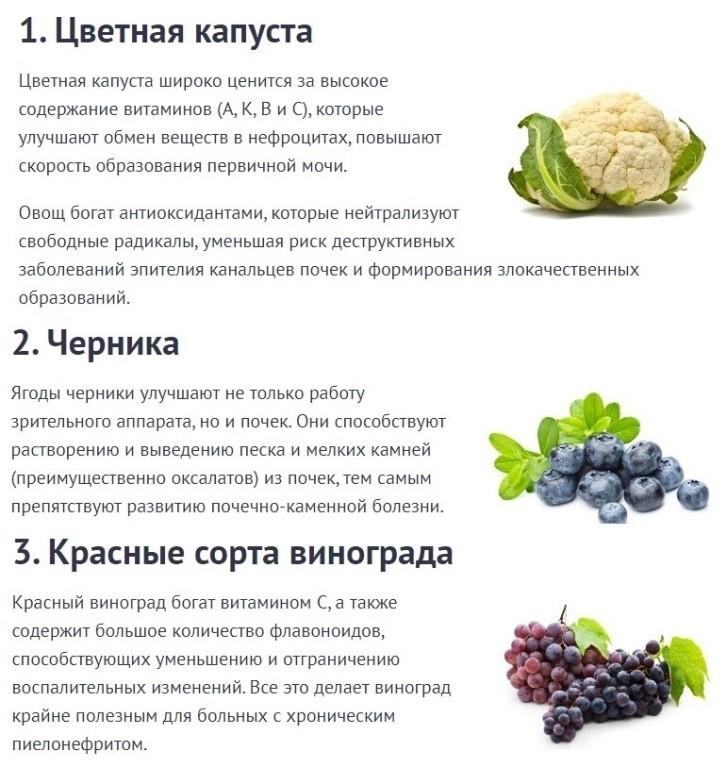 Какие продукты полезны для почек человека