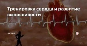 Упражнения для сердца: как тренировать и укрепить сердечную мышцу в домашних условиях?