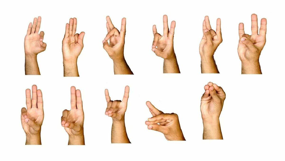 Упражнения для пальцев рук. | лечебная физкультура