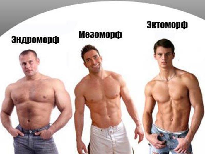 План питания для мужчины-эндоморфа на набор мышечной массы