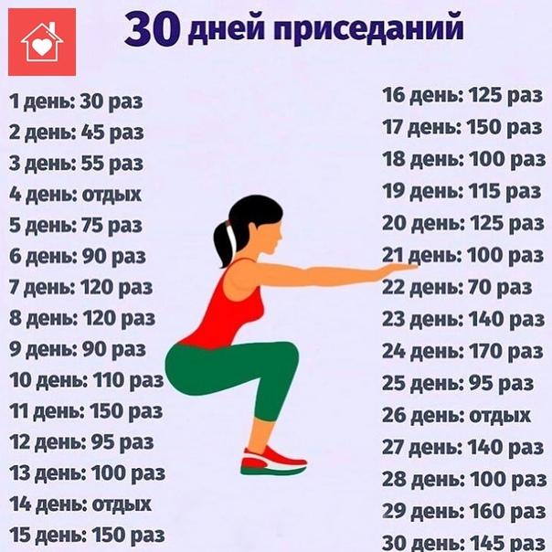Программа тренировок на месяц: правила составления плана и комплексы упражнений