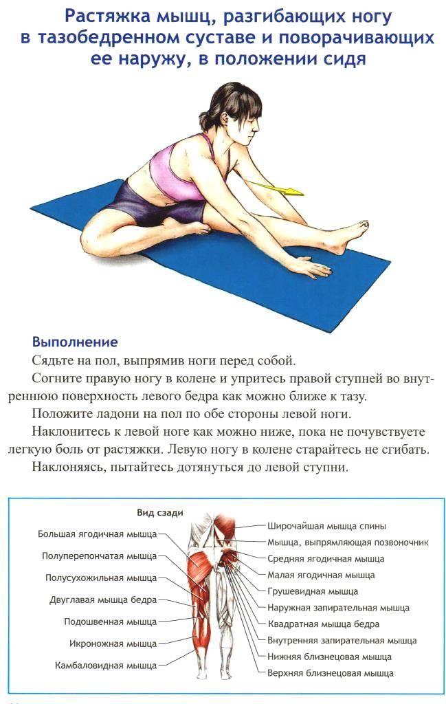 Как подтянуть ягодицы: упражнения для подтяжки попы