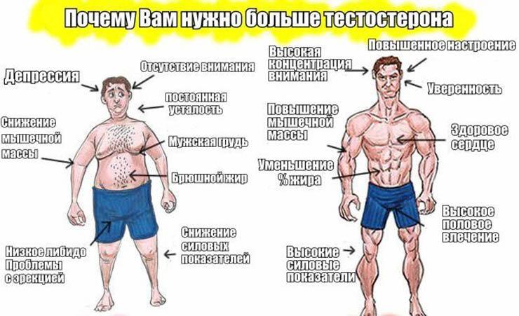 Крепатура: почему болят мышцы после тренировки, как снять мышечную боль