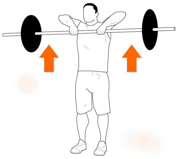 Тяга к подбородку: все об этом упражнении + видео выполнения