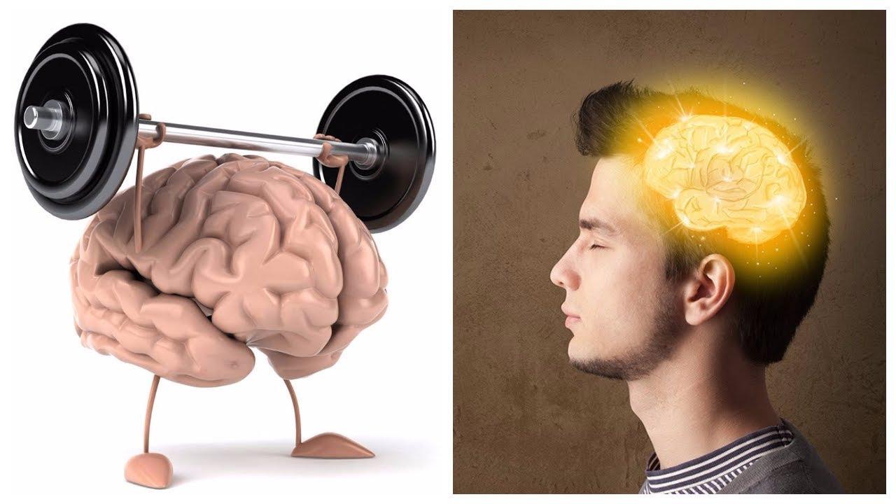 Влияние стресса на работу мозга и функции памяти