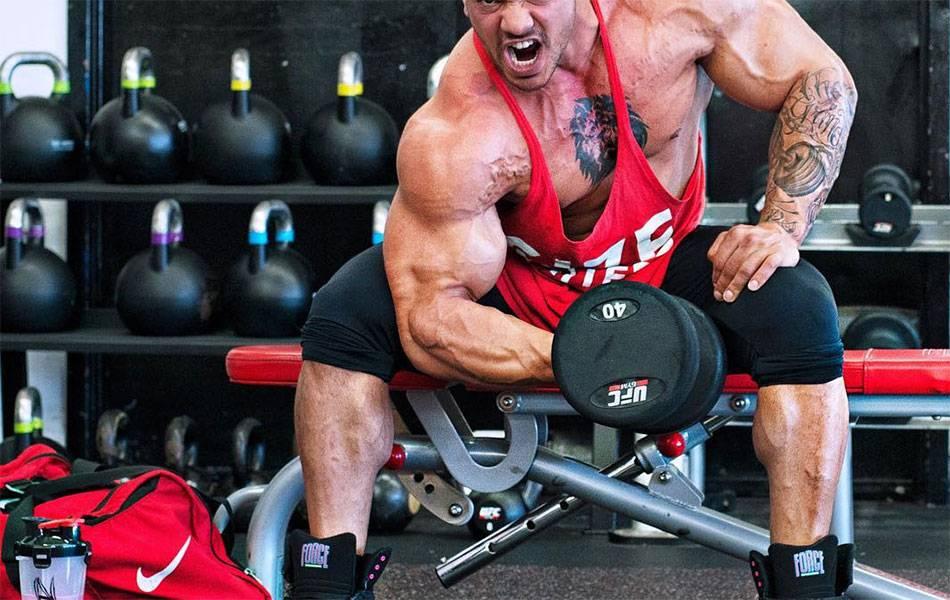 Программы тренировки для набора мышечной массы новичкам и питание