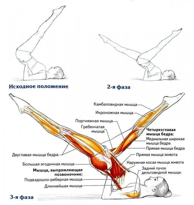 Как делать упражнение ножницы: советы тренеров как выполнять упражнение (145 фото)