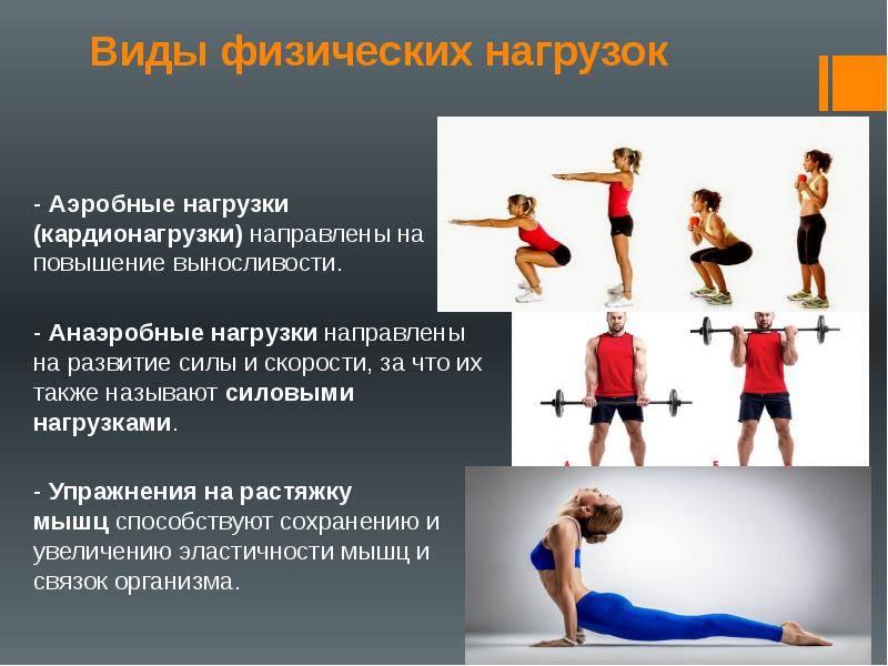 Аэробные нагрузки, упражнения и виды тренировок