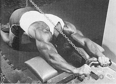 Как накачать руки по чемпионской методике
