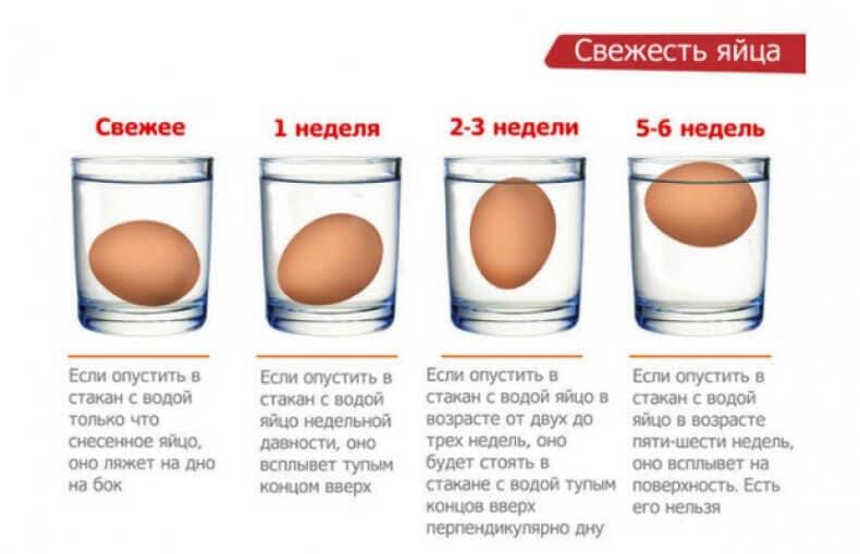 Можно ли есть яйца при похудении? какие лучше: сырые, вареные или жареные?