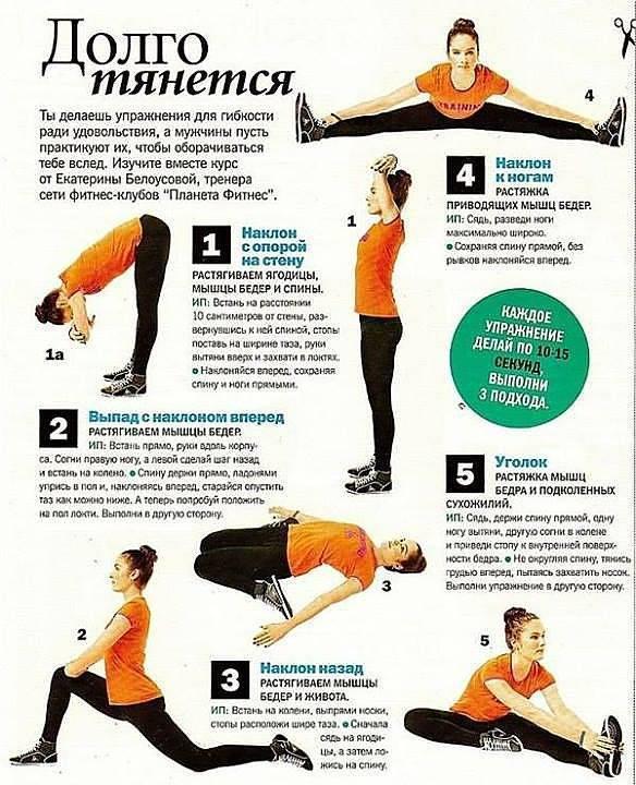 Стретчинг для начинающих: уроки стретчинга для начинающих в домашних условиях | laboca dance