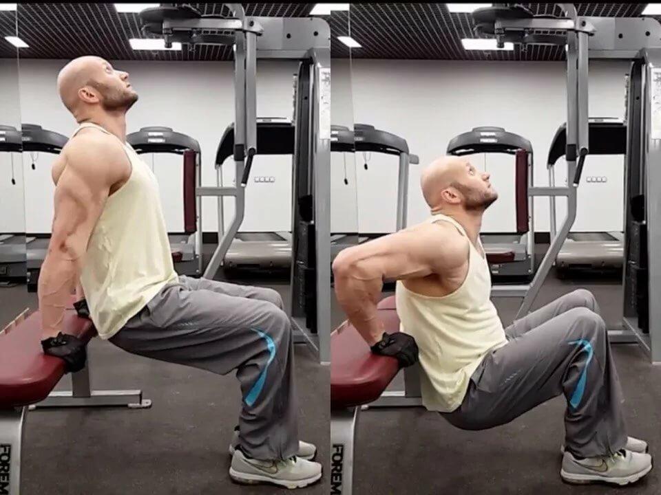 Обратные отжимания от скамьи: что нужно знать об упражнении?