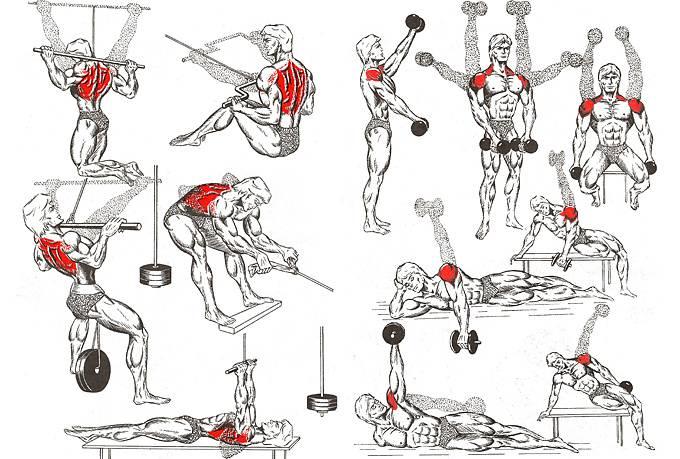 Какие упражнения можно делать не вставая с офисного стула
