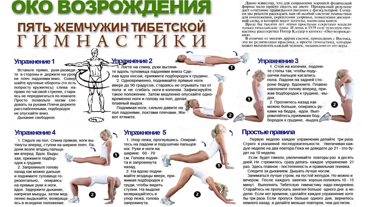 12 основных упражнений для укрепления коленного сустава (с фото)