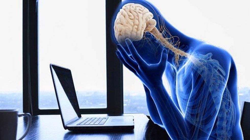 Глава 3 как перестроить свой мозг ученый изменяет мозг: улучшение восприятия и памяти, скорости мышления. пластичность мозга