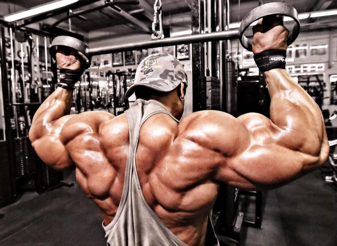 Бодибилдинг: 5 лучших тренировочных программ. • bodybuilding & fitness