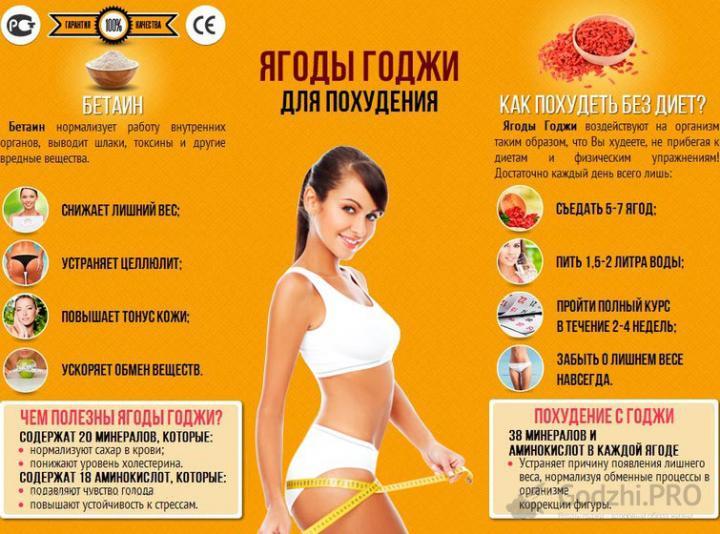 Практические советы: как похудеть в домашних условиях без диет