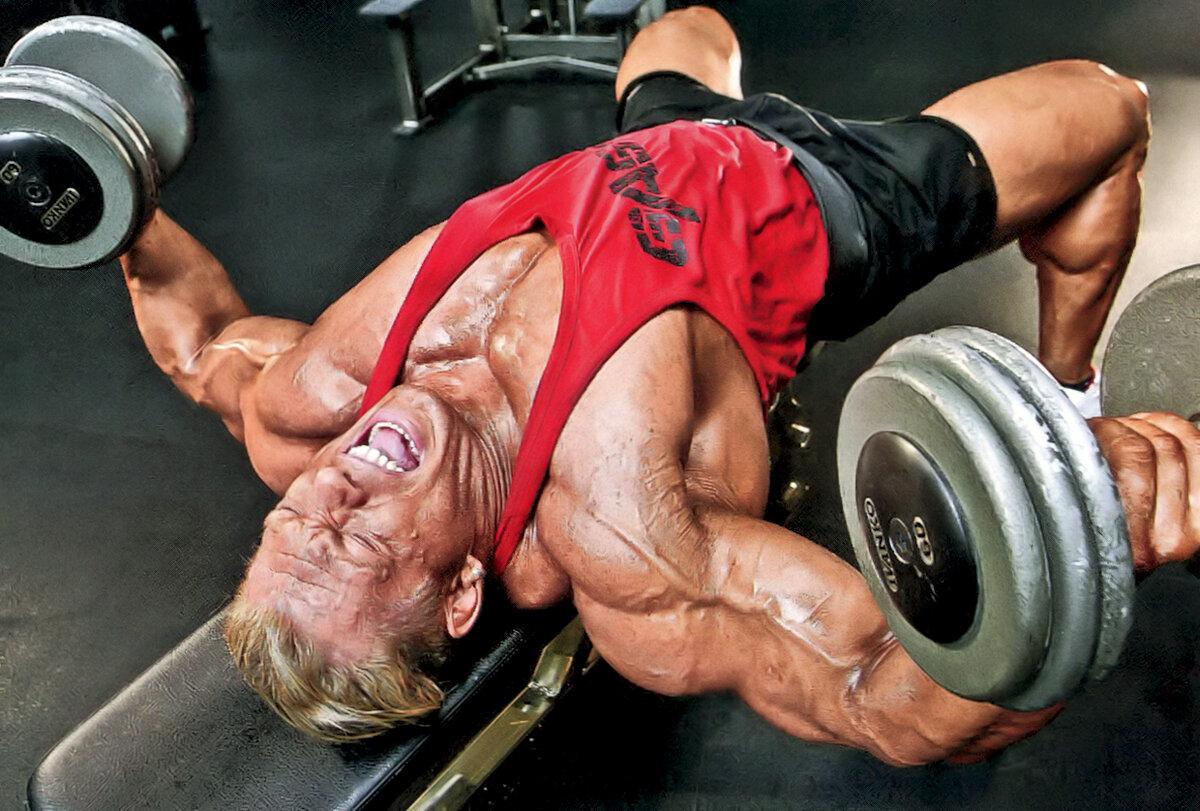 Мышечная память и перерывы в тренировках
