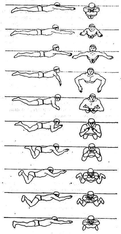 Кроль и брасс: техника плавания, в чем разница и в чем разница этих видов? можно ли ногами работать в одном стиле, а гребок руками - делать в другом?