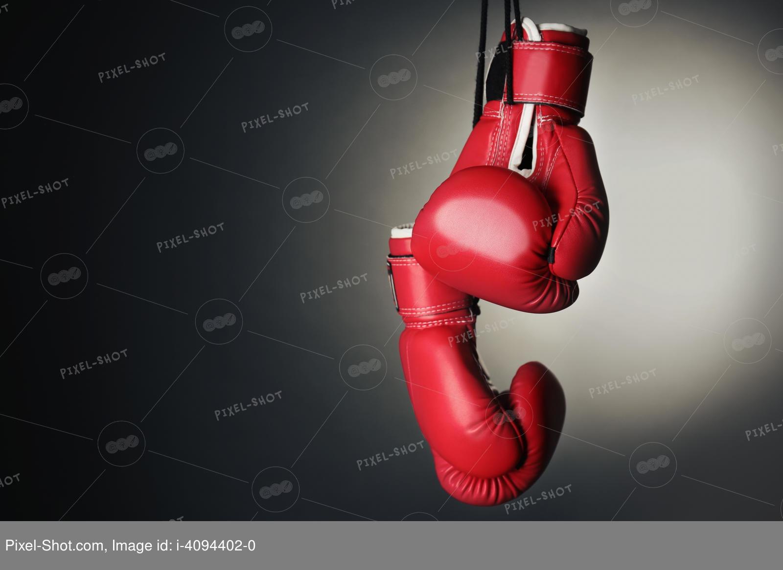 Боксерские перчатки – как выглядят, особенности разных видов, как выбрать, рейтинг лучших