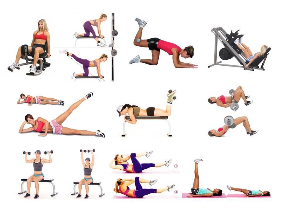 Программа тренировок в тренажерном зале для девушек для похудения: лучшие упражнения и пример меню питания