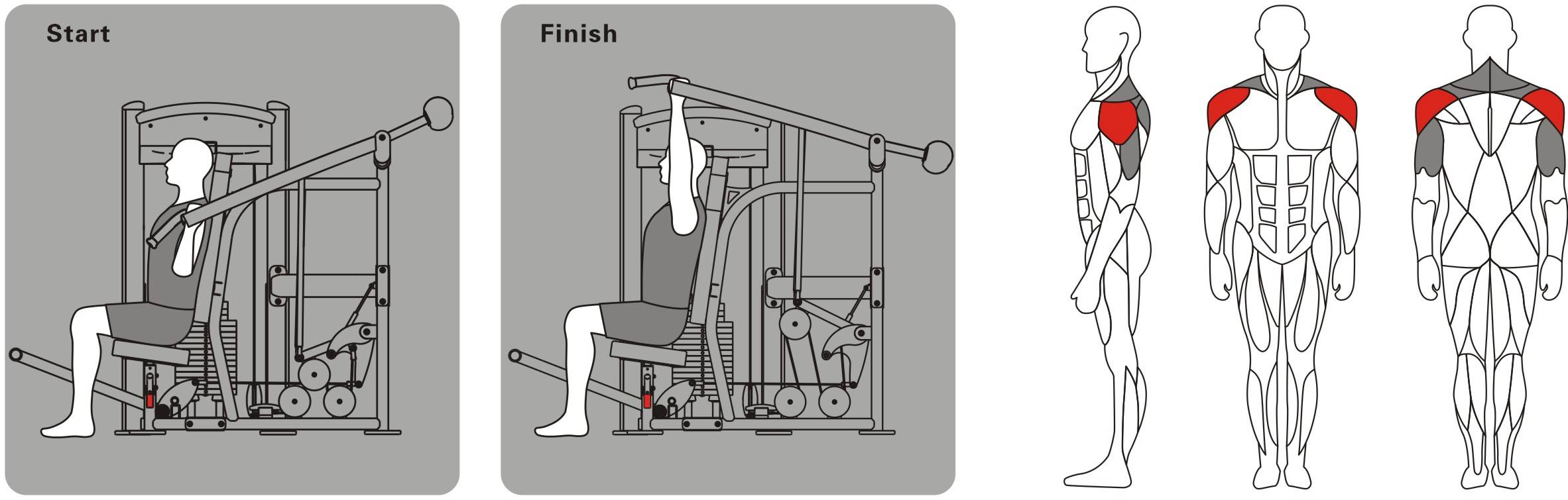 Жим на плечи сидя в тренажере для тренировки мышц плечевого пояса