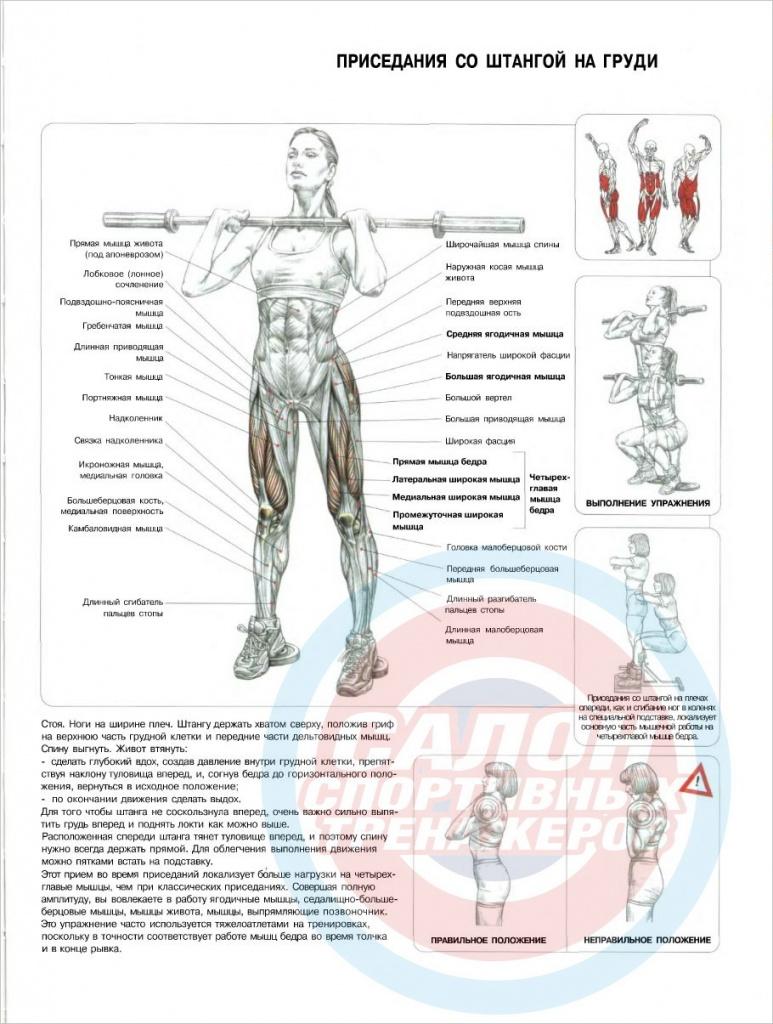 Азбука мышечной массы | свежий взгляд на принципы вейдера | часть 1