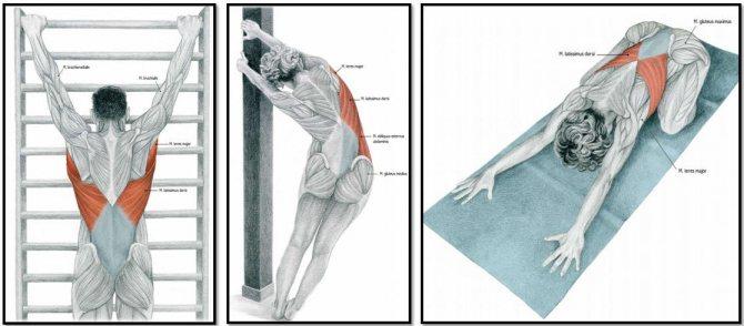 Растяжка (тракция) при грыже позвоночника в домашних условиях: инструкция