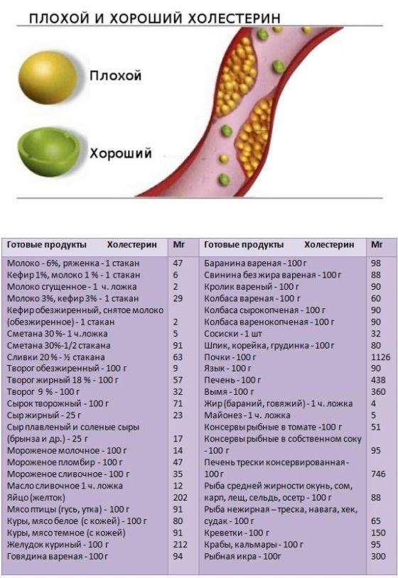 Продукты повышающие холестерин в крови - список
