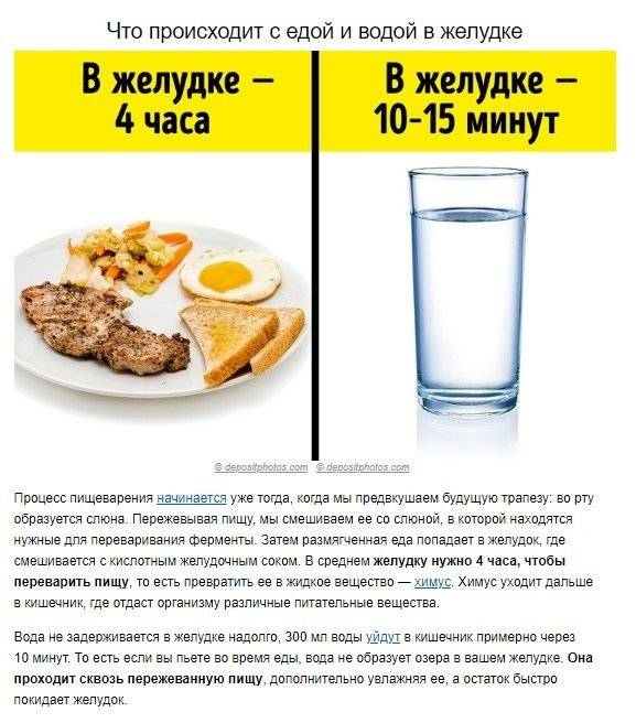 Пить воду во время еды: можно ли, вредно или полезно, какую жидкость нужно употреблять, а какую нельзя и почему?