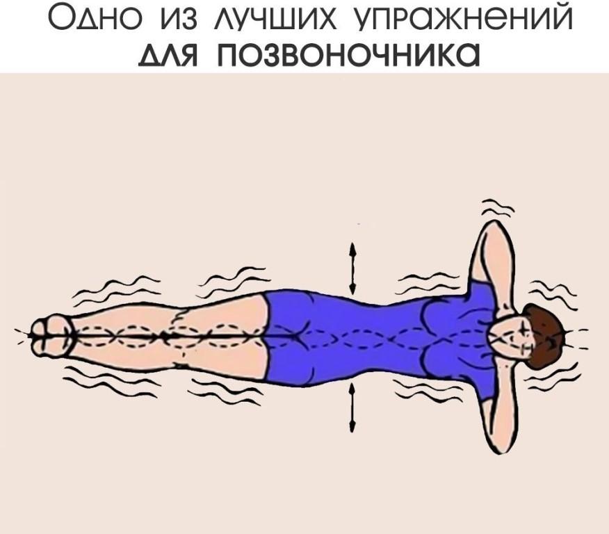 Упражнение для спины золотая рыбка. упражнение «золотая рыбка» для здоровья позвоночника