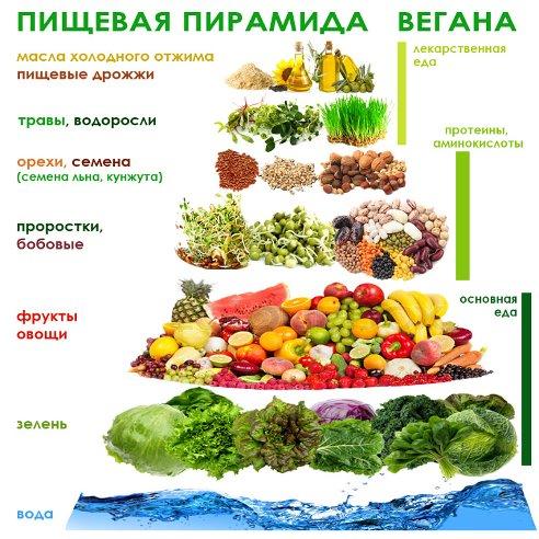 Вегетарианская диета для похудения: меню на неделю и рецепты