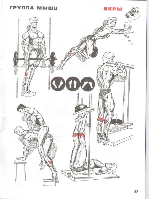 9 лучших упражнений, позволяющих быстро накачать ноги девушке