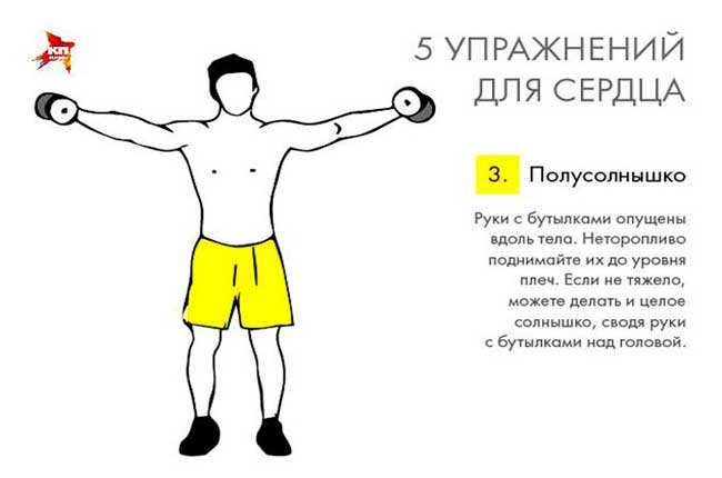 Кардиотренировка: упражнения в домашних условиях, видео, тренажеры