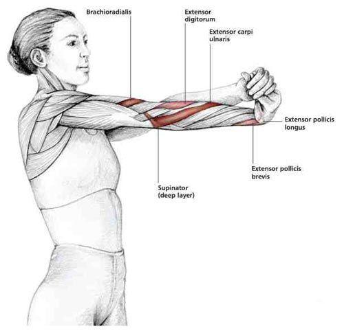 Топ-25 упражнений из йоги для шейного отдела и плечевого пояса