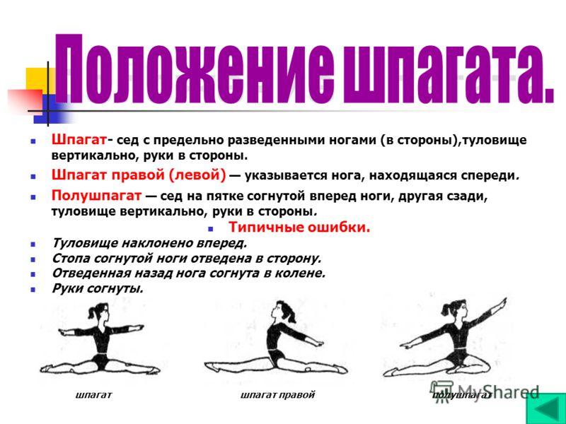 Упражнения для растяжки на шпагат в домашних условиях - allslim.ru