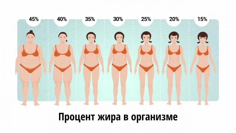 Процент жира в организме —как узнать? таблицы для мужчин и для женщин