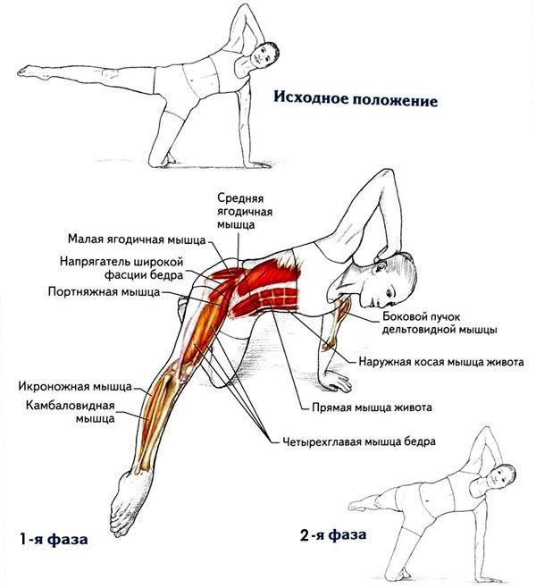 Стретчинг: упражнения для ягодичных мышц, которые избавят от целлюлита и жировых отложений