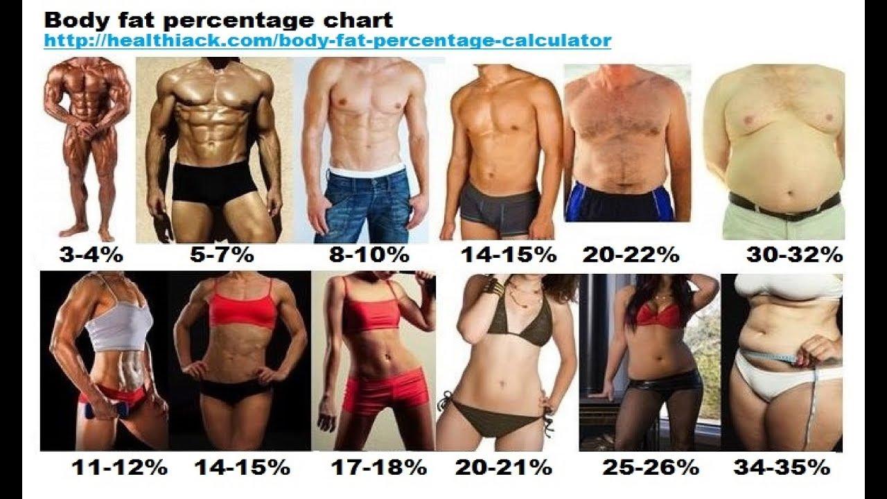 Сколько жира должно быть в женском теле - норма содержания жира в организме