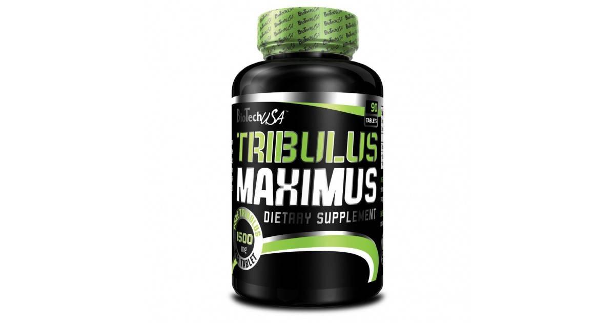 Трибулус террестрис бесполезен как бустер тестостерона. отзывы учёных | promusculus.ru