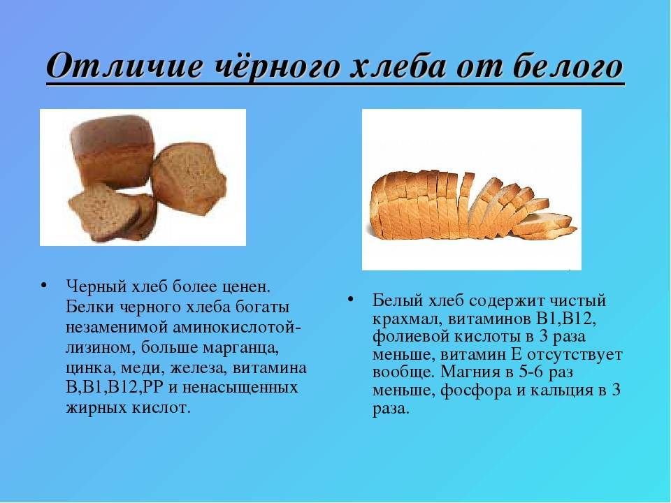 Польза и вред хлеба для организма человека