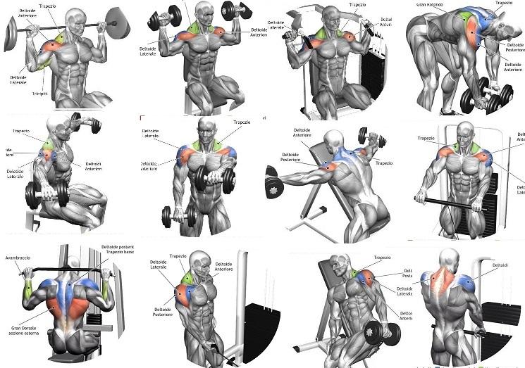 Как накачать грудь и трицепс: комплексная тренировка