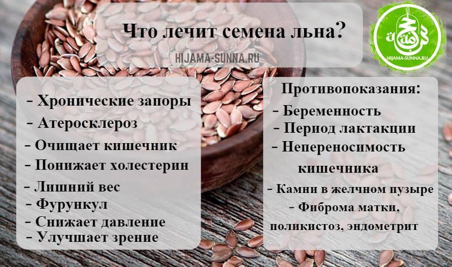 Польза семян льна: лечебные свойства для организма и применение дома | здорова и красива